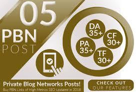Create 5 High PA/DA 25+ Homepage PBN Backlinks