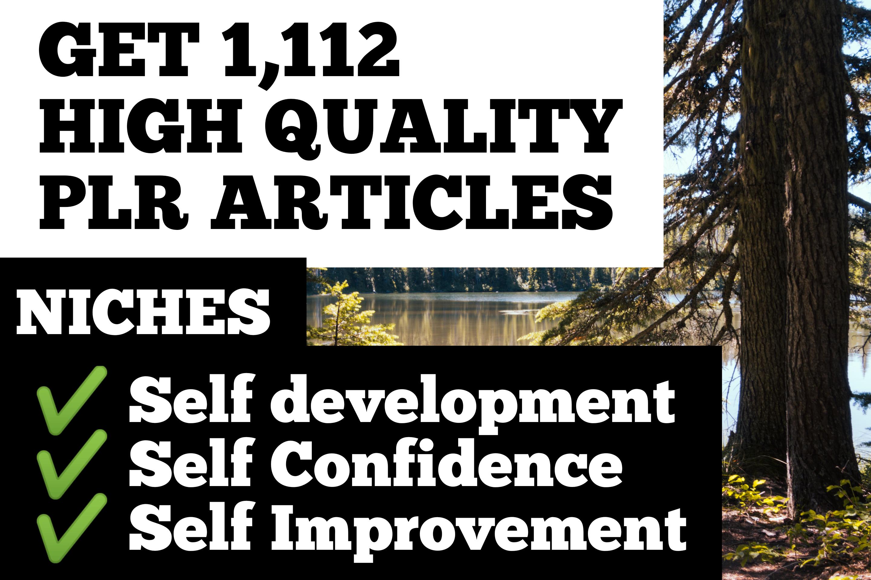 I will send you over 1000 PLR Articles on self development,self confidence,self improvement niches