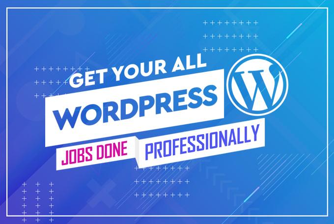 Create a Professional & Responsive Wordpress Website