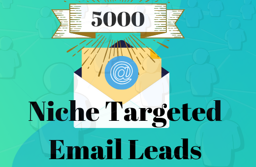 500 Niche Targeted Email Leads For your business