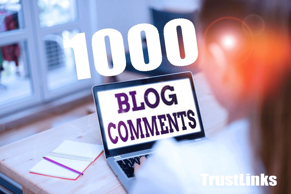 special offer- 1000 Blog Comments Backlinks