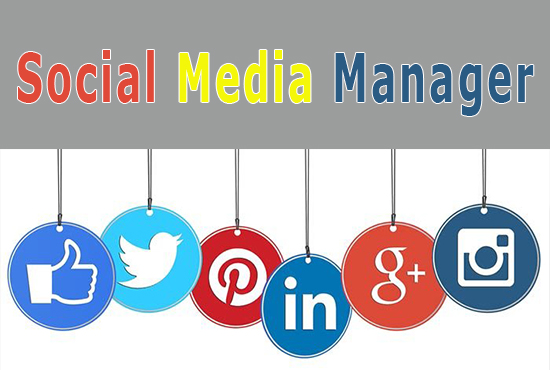 I will do your social media manager on all platforms for 30 days