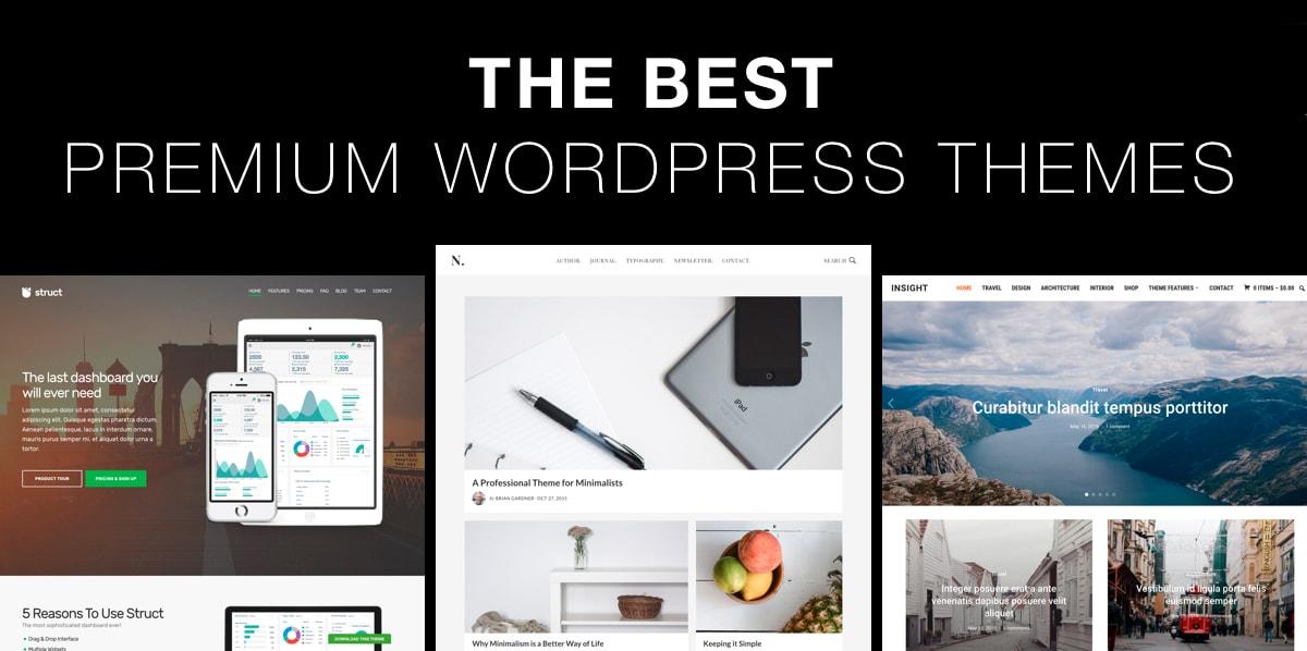 I will install wordpress premium theme