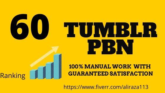 Get 60 tumblr permanent PBN Backlinks DA 98