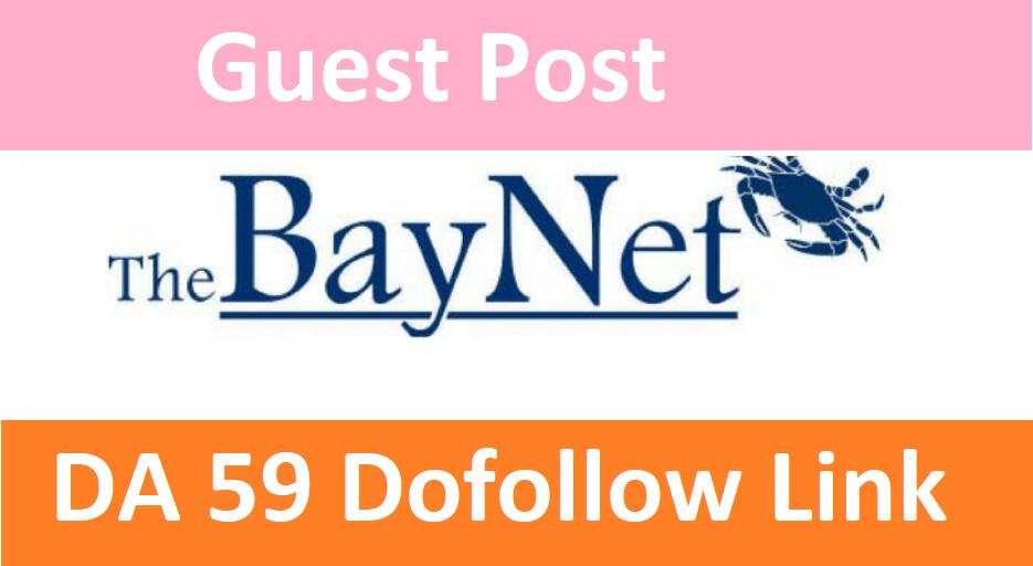 Publish On TheBayNet. com With High da 59+