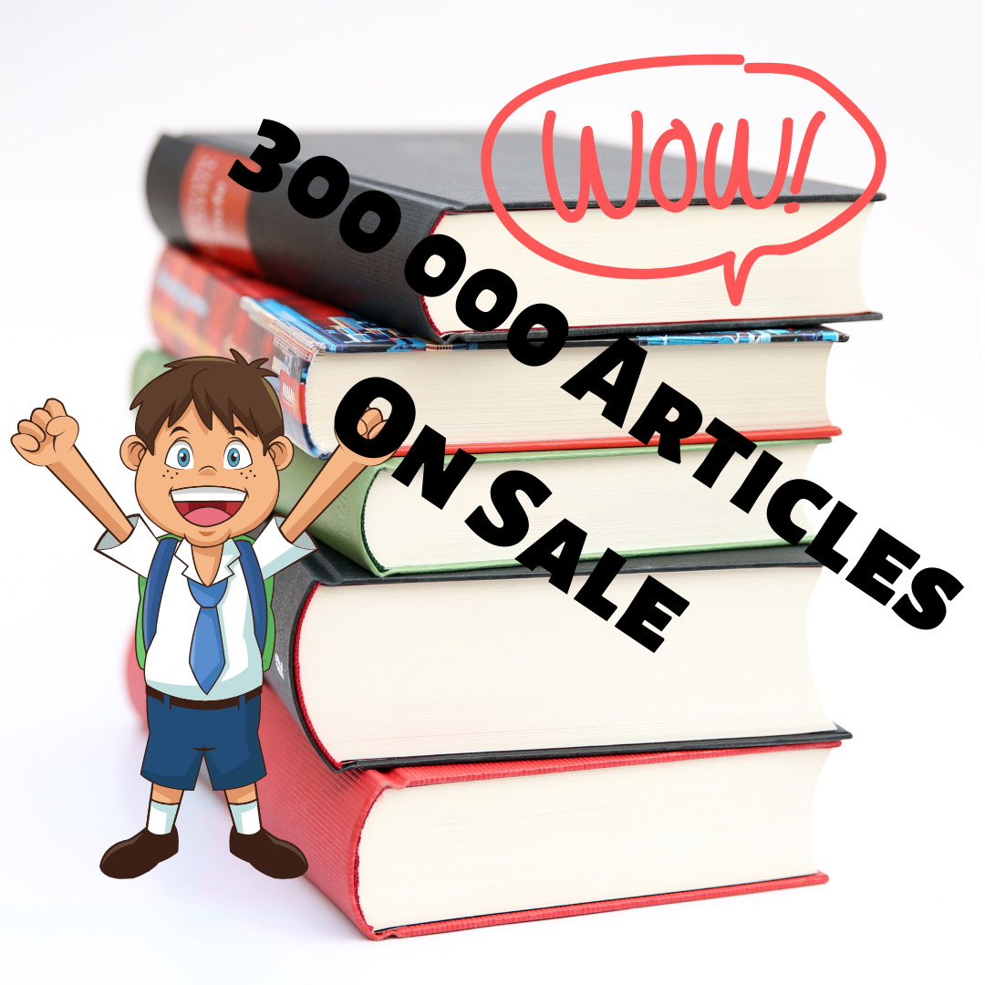 300 000 Articles On Sale To Start Business In Any Niche You Can Imagine