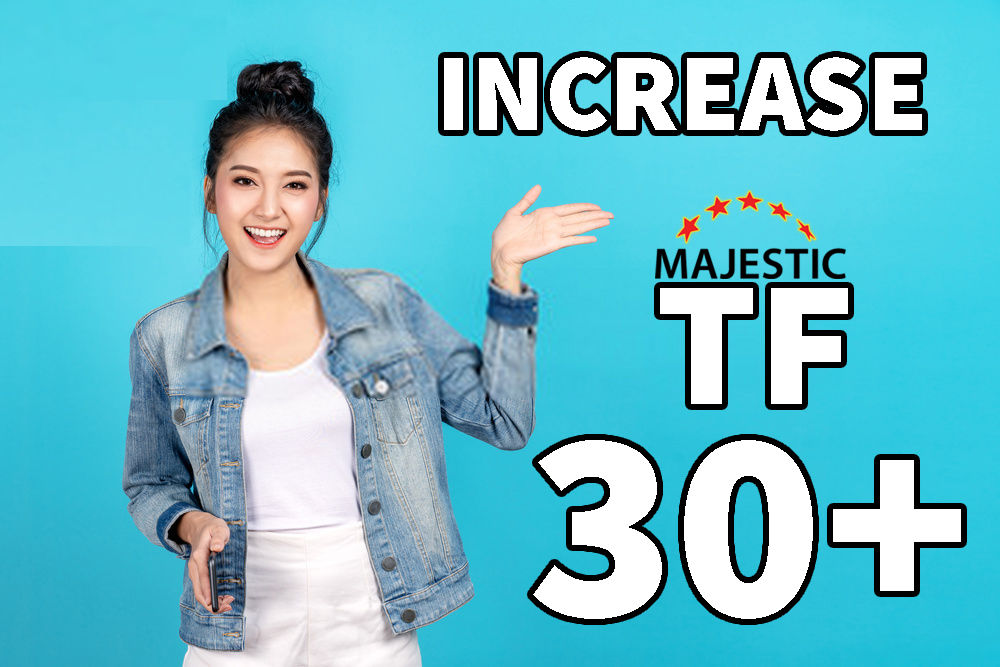 I will Increase Trust Flow TF 30 Plus with SEO Authority Backlinks