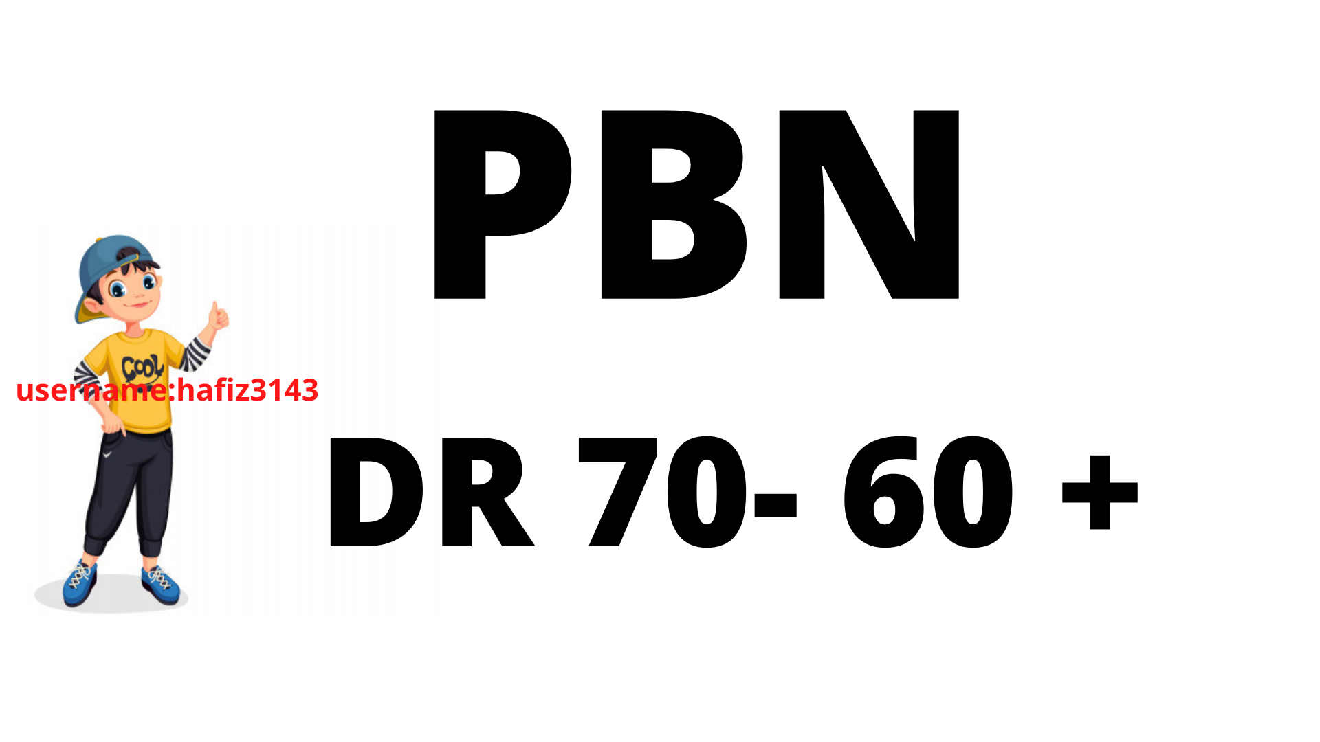Build DR 70 To 60 Plus 24 PBN Backlinks High Authority Links