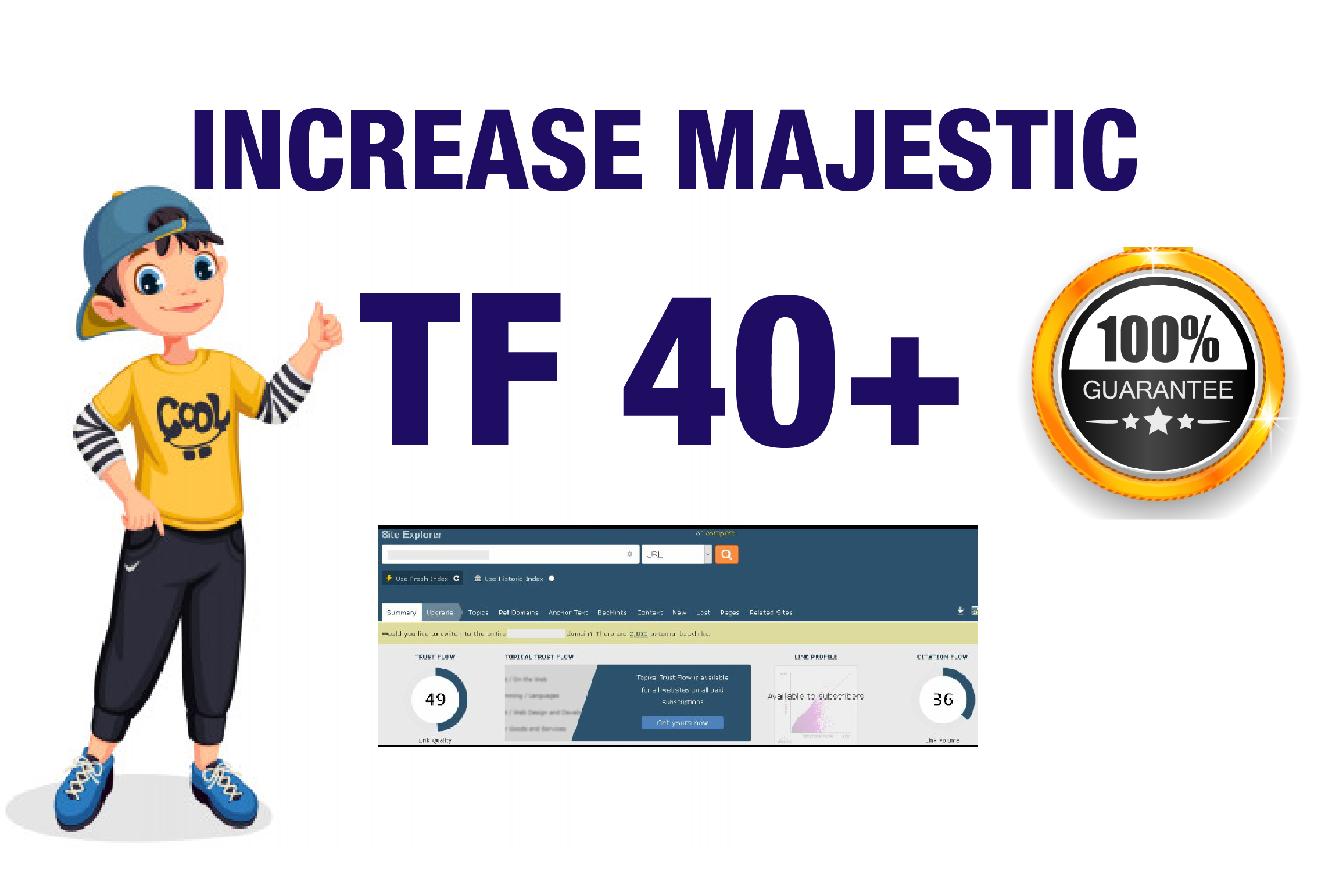 I will help you to increase majestic Trust Flow 31 plus