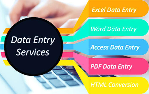 I can do any type of Data Entry work with 100 accuracy