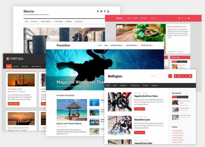 Professional eye-catching Wordpress Website Design-With Blog-2019