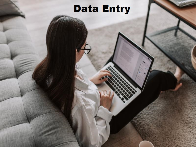Data Entry/Product or Product Description Entry/Website Proof Reading