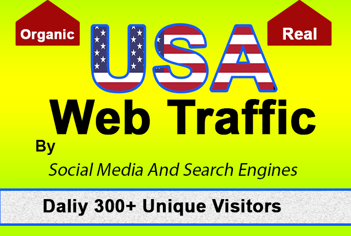 I will drive Real,  google trackable Organic and safe USA Web traffic for 30 days