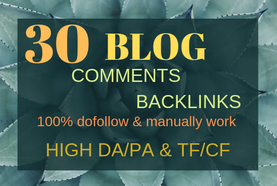make 30 high quality niche relevant blog comments backlinks