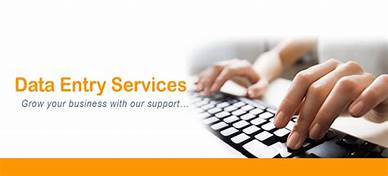 I will be your virtual assistant for any kind of Data Entry work