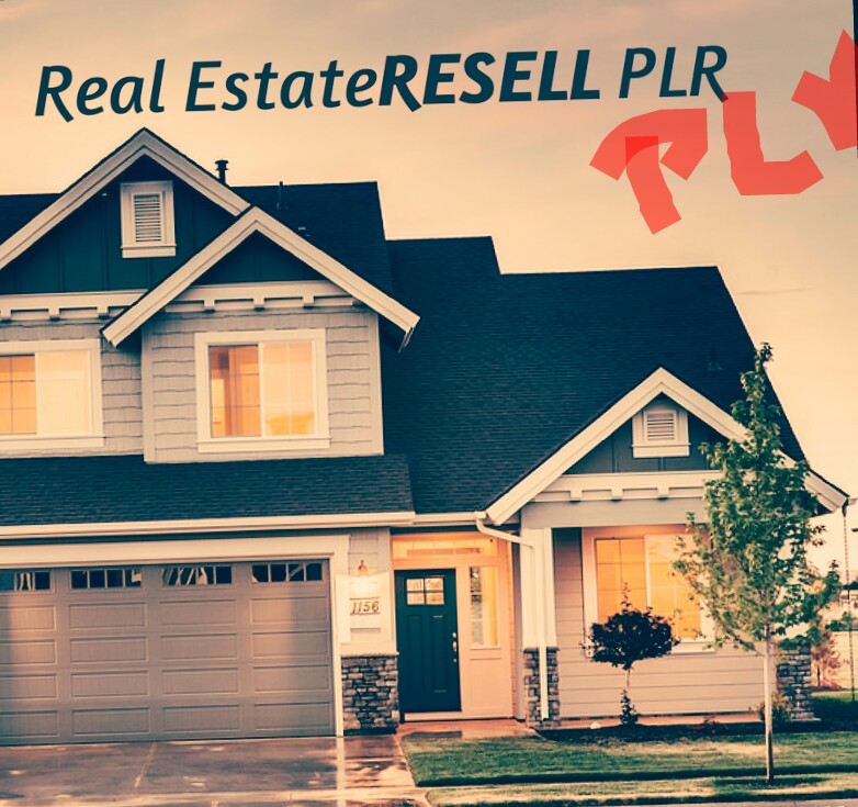 Real State Plr Artical For Your blog post