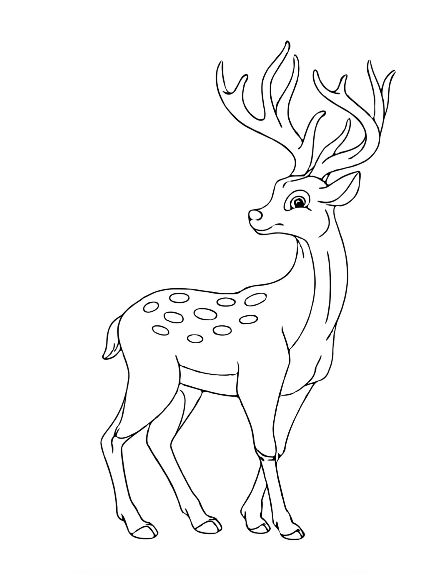 30 animal coloring pages for kids resell right