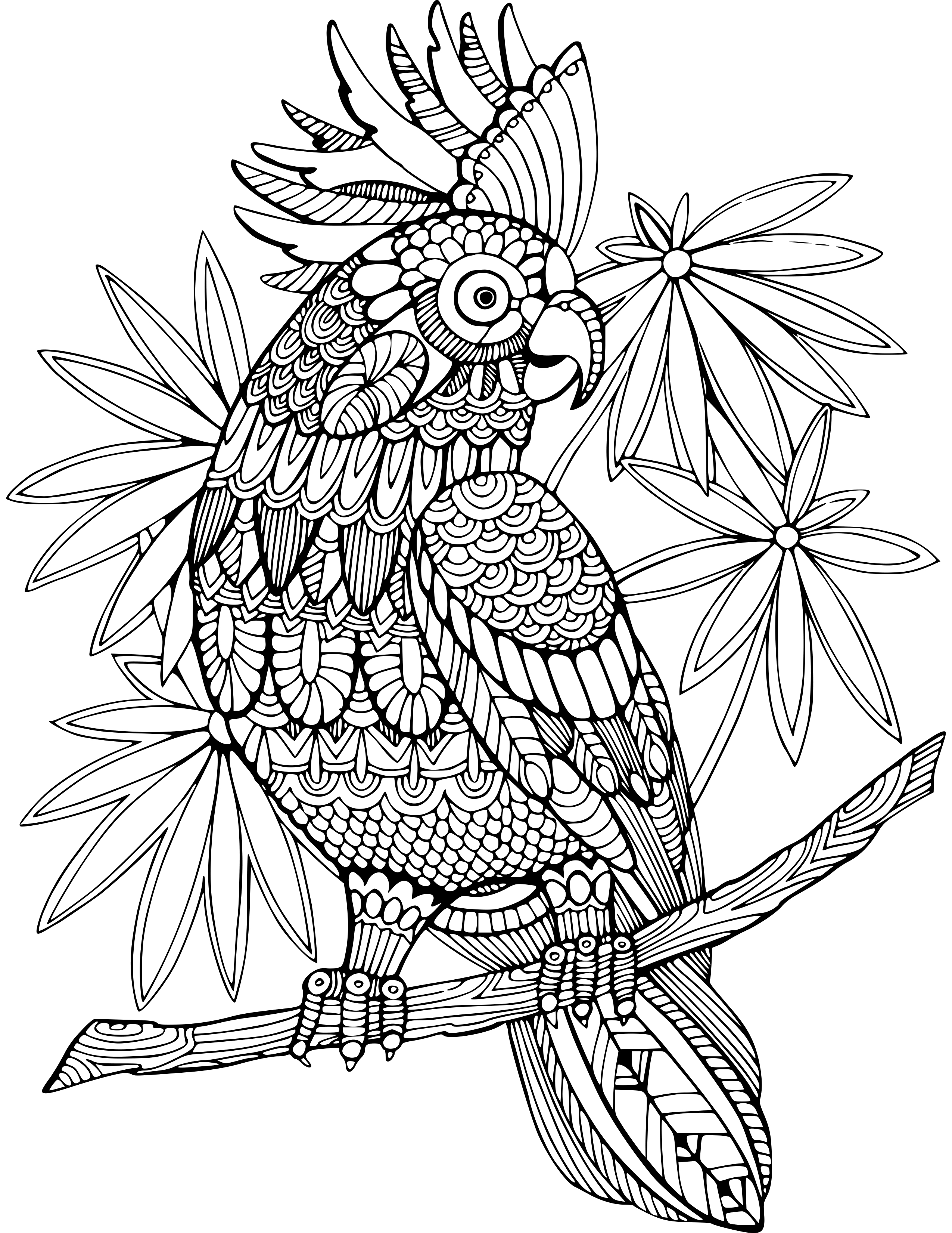 60 Animal Coloring Pages for Adults with Resell Right
