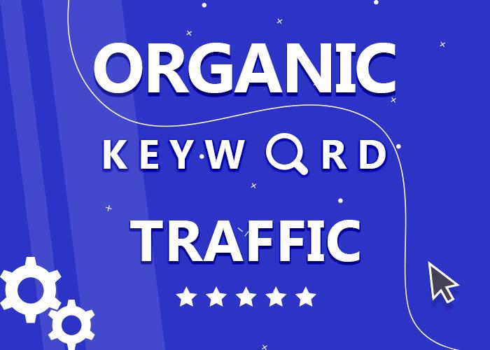5000 Organic Keyword Targeted Traffic LIMITED OFFER