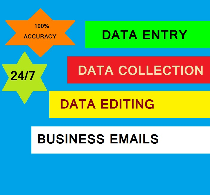 BEST QUALITY,  NO MISTAKES. FULFILL YOUR DATA ENTRY REQUIRMENT WITH JUST ONE CLICK.