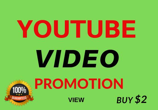 Fast Video Views Non Drop Refill Guarantee