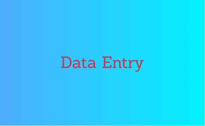 I will be your data entry operator.