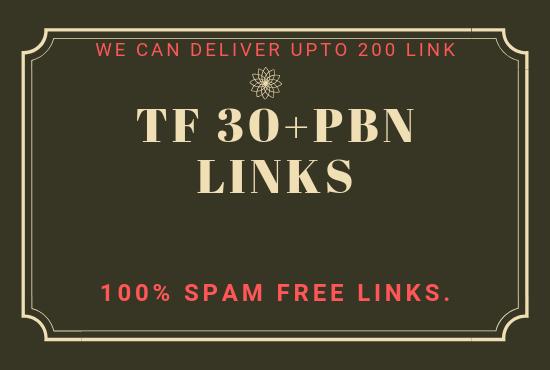 Provide you high TF 30+ PBN Backlinks