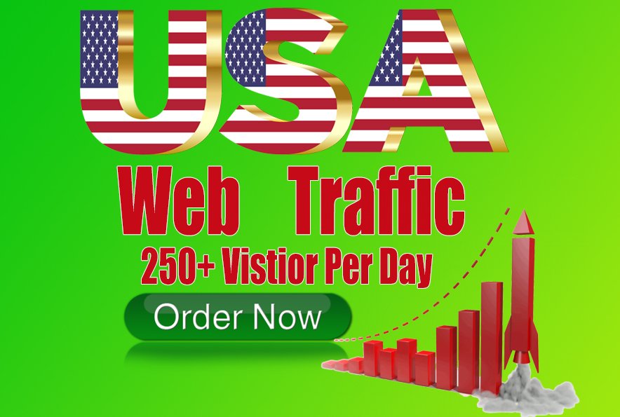 i will drive 10000+ Real USA web traffic for one month