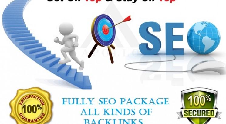 Build 500 DR 50+ homepage parmanent backlinks