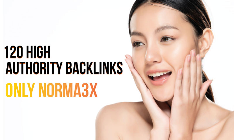 I will create 120 High Authority Backlinks and add links my premium Indexer SEO