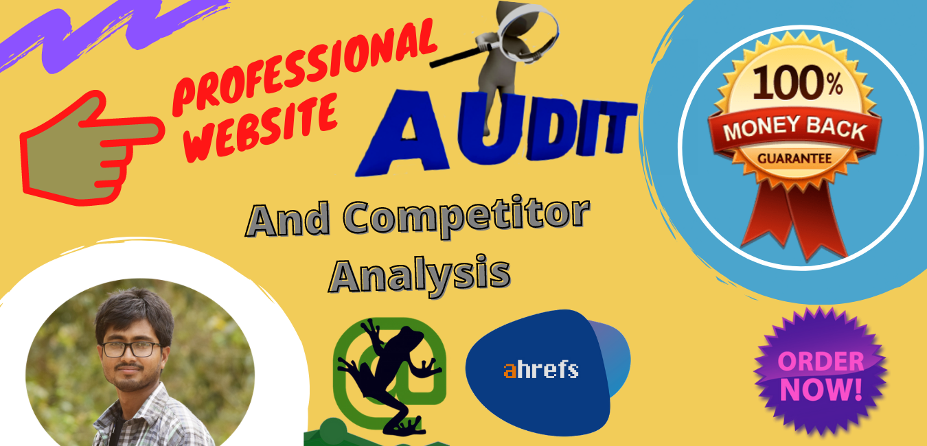 I will provide a Professional SEO audit report and competitive website analysis