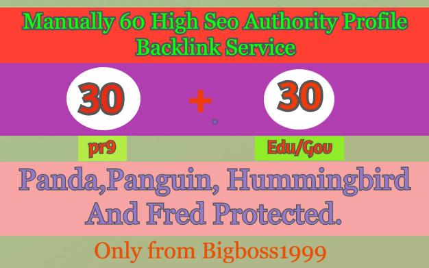 I will manually do 30 PR9 + 30 Edu/Gov High SEO Authority Backlinks - Skyrocket your Google RANKINGS