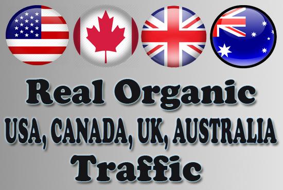 Real And Safe Google Organic Visitors USA,  CANADA,  UK,  AUSTRALIA Traffic 30 Days