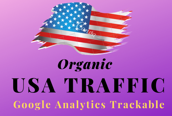 Do 600+ per day real and safe organic USA traffic 15 days