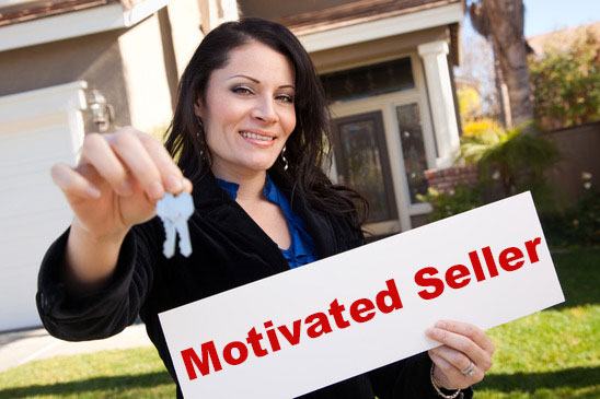 I will provide real estate motivated seller leads