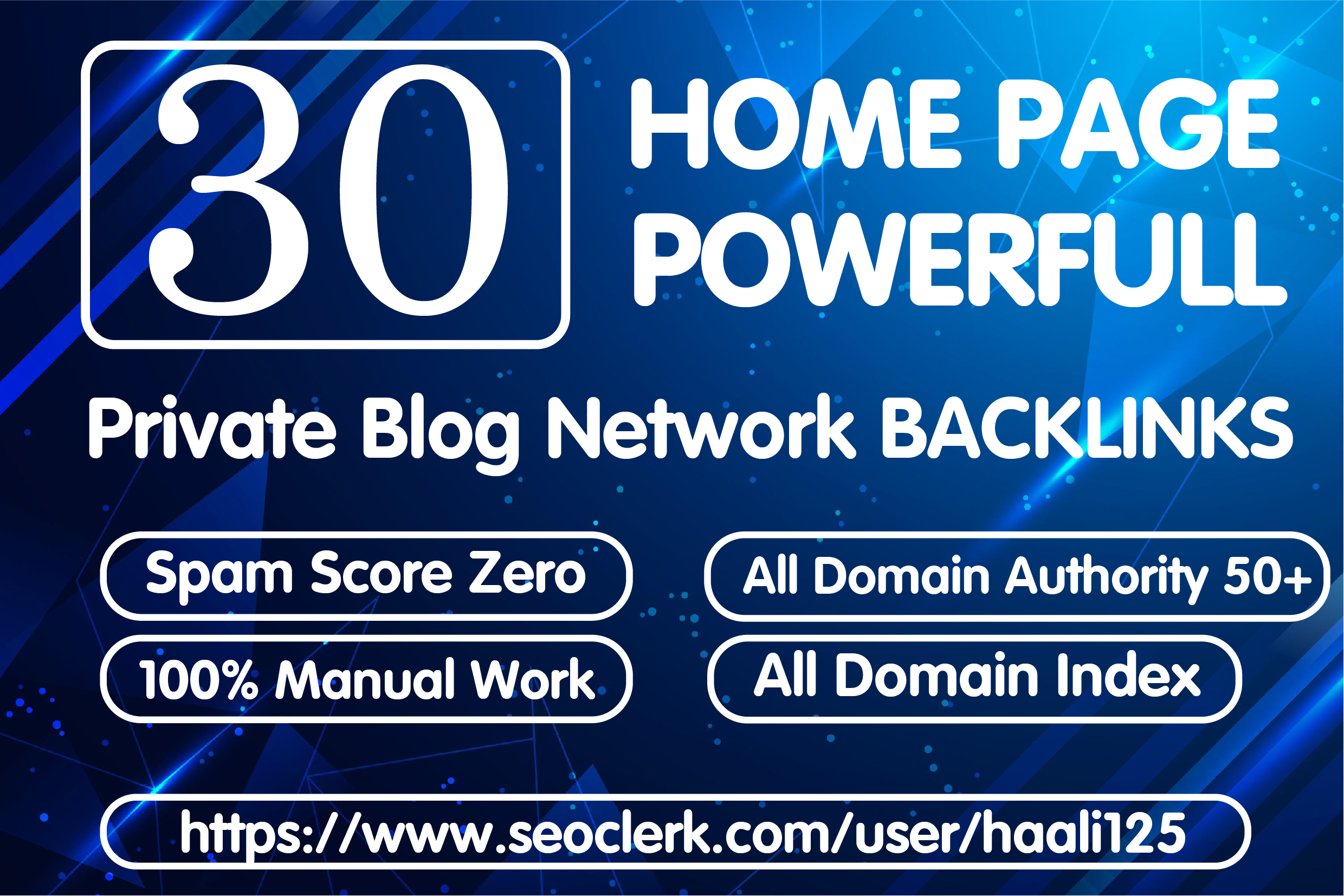 Get 30 Homepage Permanent PBN Backlink in DA 50+
