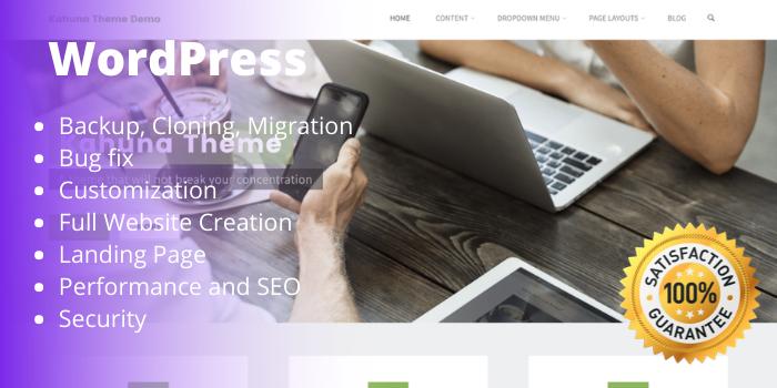 fix wordpress errors and customize theme and plugins