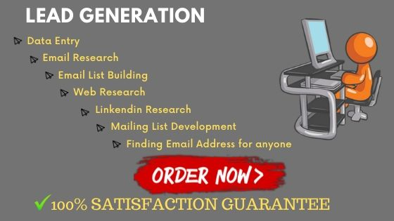 I will be your virtual assistant,  data entry and Lead Generation assistant