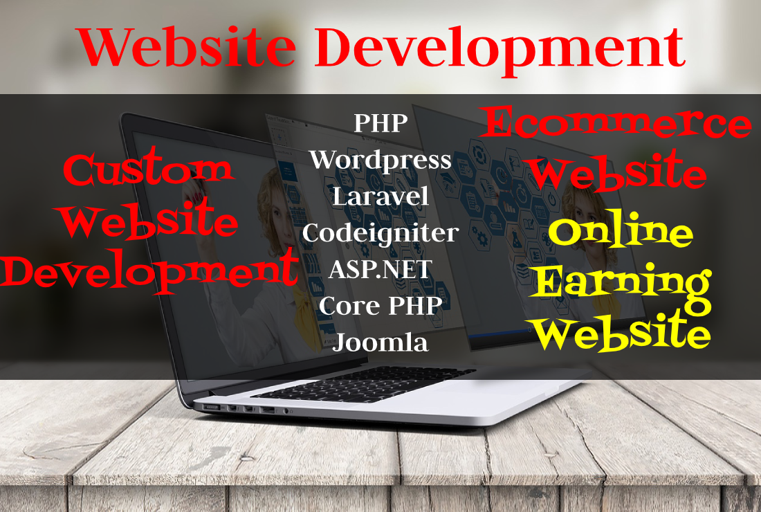 I will develop a website for you