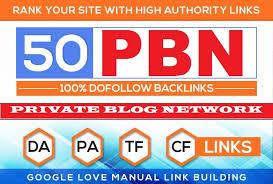 Build 50 pbn homepage backlinks all dofollow HQ links