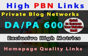 Build 6 manual permanent high da pa 600 dofollow homepage,  pbn links