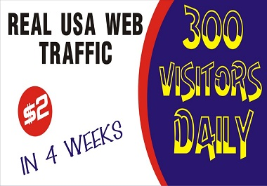 do usa, web,  organic, real, targeted,  visitors traffic to website in 4 weeks