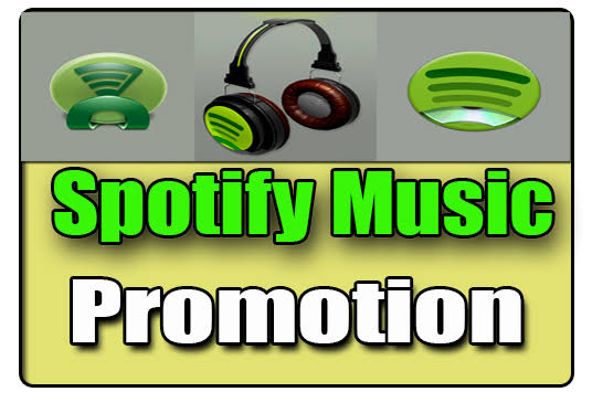 will do promotion your music grow your real listener