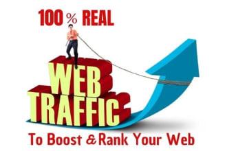 10,000 Adsense safe organic web traffic