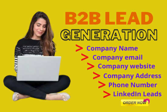 Do B2B Lead Generation,  Web Research