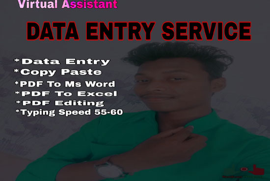 I will do excel data entry, copy past,  pdf to word,  typing