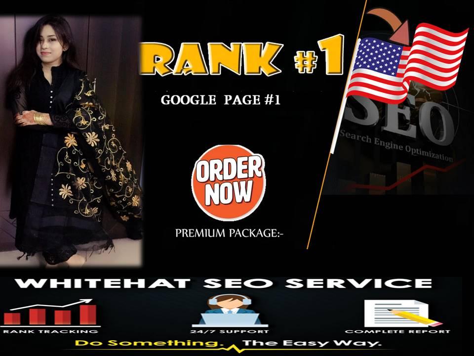 Will Create 25 Edu Gov And 75 Google Rank SEO USA Pr9 Link Building Safe Profile Authority Backlinks