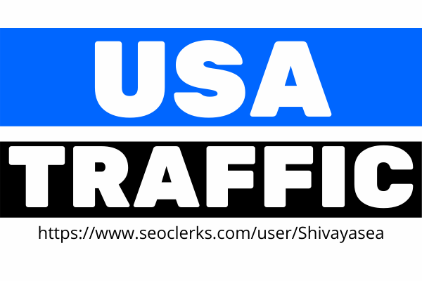 Advance niche targeted real visitors USA web traffic for 30 days