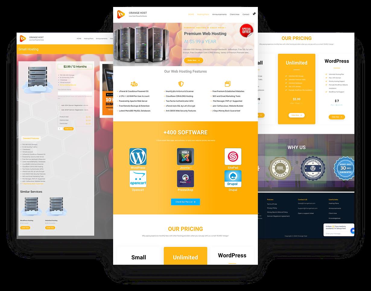WEB HOSTING BUSINESS WORDPRESS WEBSITE Established Profitable Professional