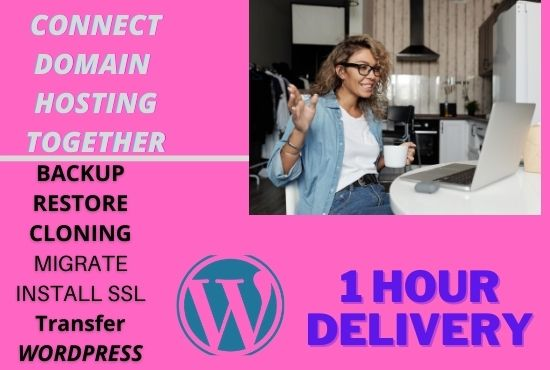 I will duplicate, redesign wordpress website in 30 minutes